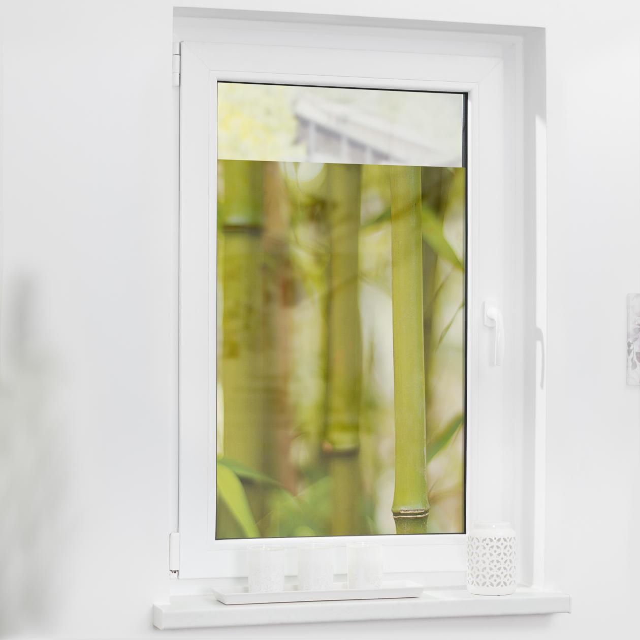 Fensterfolie Selbstklebend Sichtschutz Bambus Grun Lichblick Shop