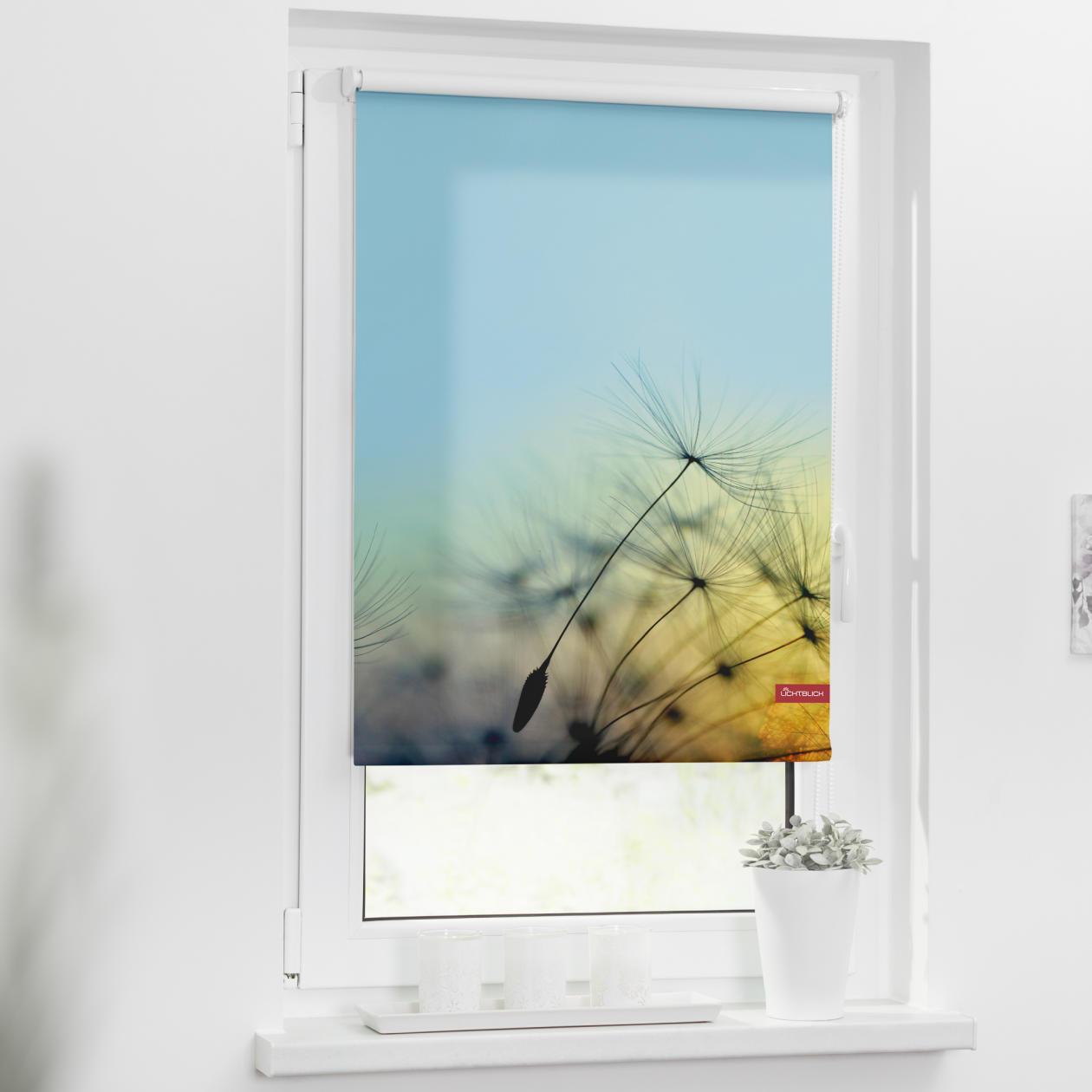 rollo klemmfix ohne bohren blickdicht pusteblume blau lichblick shop. Black Bedroom Furniture Sets. Home Design Ideas