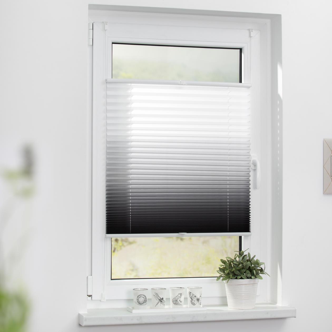 plissee klemmfix ohne bohren verspannt farbverlauf lichblick shop. Black Bedroom Furniture Sets. Home Design Ideas