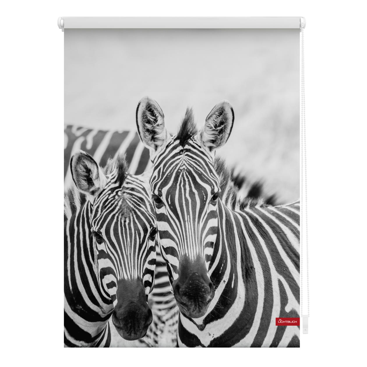 rollo klemmfix ohne bohren blickdicht zebra wei t rkis lichblick shop. Black Bedroom Furniture Sets. Home Design Ideas