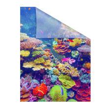 fensterfolie selbstklebend sichtschutz aquarium bunt lichblick shop. Black Bedroom Furniture Sets. Home Design Ideas
